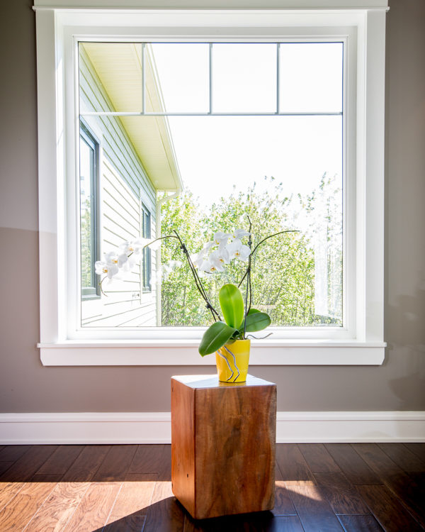 Fixed or Picture Window with flower pot on a pedestal